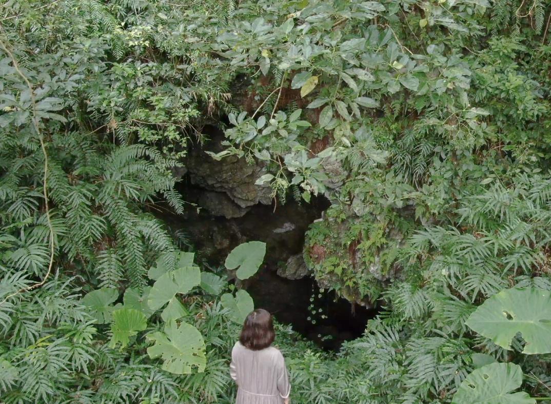 ガンガラーの谷 生命の神秘を辿る旅へ イナグ洞