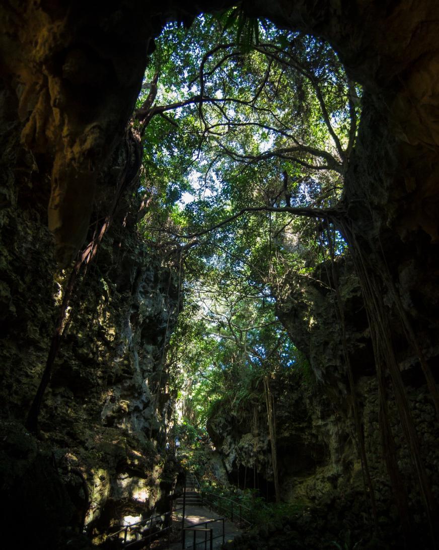 ガンガラーの谷は、数十万年前の鍾乳洞が崩れてできた太古の谷。