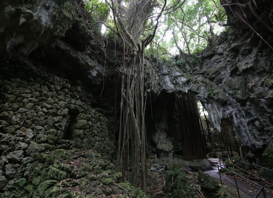 ガンガラーの谷 生命の神秘を辿る旅へ 今と太古を結ぶ祈りの旅。